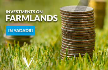 Investment on farmlands image